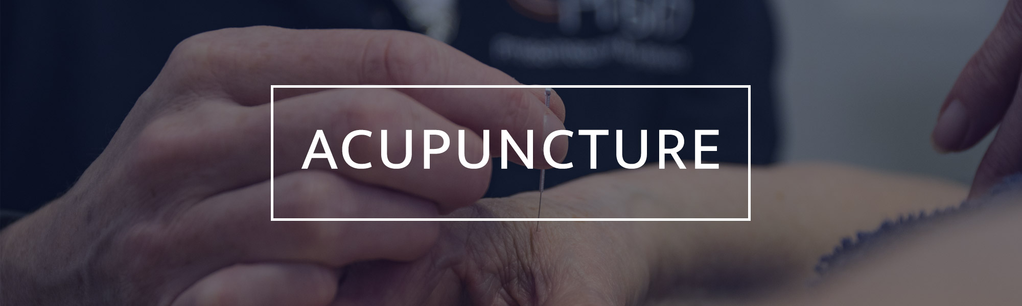 Acupuncture Header 2